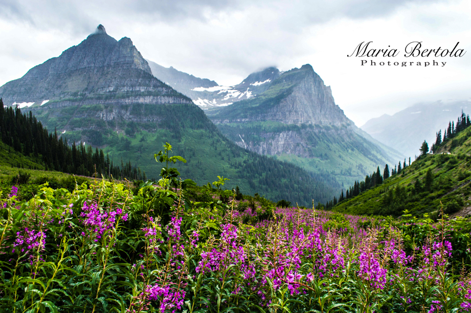 Glacier National Park -Montana